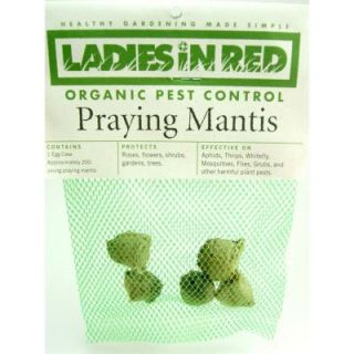 LADIES IN RED Five Praying Mantis Egg Cases for Organic Control of Yard and Garden Pests 241