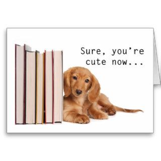 Funny Dachshund Puppy Greeting Cards