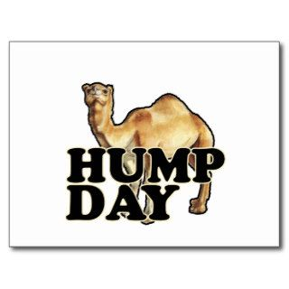 Hump Day Camel T Shirts.png Postcards