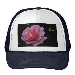 Lovely Hybrid Tea Rose 'Tiffany' Mesh Hat