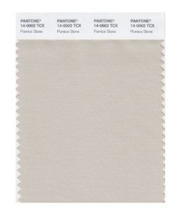 PANTONE SMART 14 0002X Color Swatch Card, Pumice Stone: Home Improvement