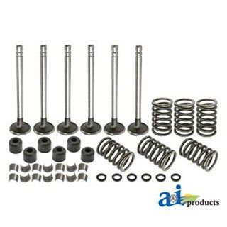 A & I Products Valve Train Kit (W/ BSD332 ENGINE) Replacement for Ford   New Industrial & Scientific