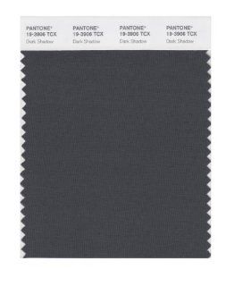PANTONE SMART 19 3906X Color Swatch Card, Dark Shadow   Wall Decor Stickers