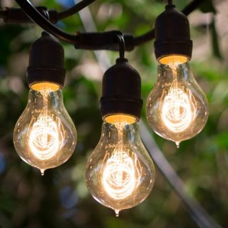 Bulbrite STRING15/E26 A19KT 48 ft. Outdoor String Light with Vintage Edison Bulbs   Outdoor Lighting