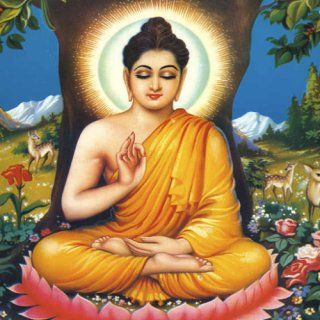 The Buddha (Jataka) Tales: Appstore for Android