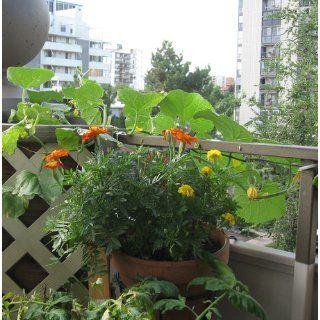 Amertac 5014BL Flower Pot Holder, Black (Discontinued by Manufacturer)  Hanging Plant Stand  Patio, Lawn & Garden