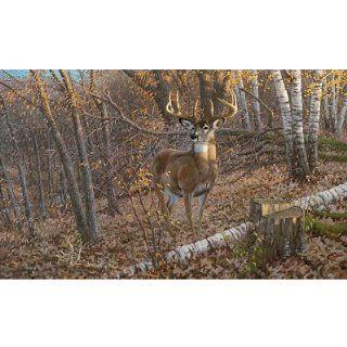 (99x164) Great Eight Big Buck Deer Huge Wall Mural   Prints