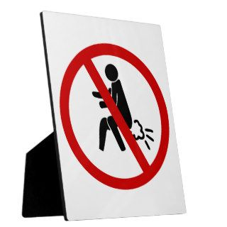NO Farting ⚠ Funny Thai Toilet Sign ⚠ Photo Plaque
