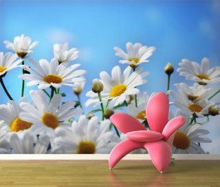 Fototapete G�nsebl�mchen KT52 Gr��e 420x270cm wei�e Blumen Tapete Küche & Haushalt