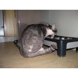 """OurPets Signature Series Elevated Feeder 4""""  Raised Pet Bowls"""