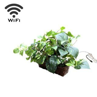 Wireless Spy Camera with WiFi Digital IP Signal, Recording & Remote Internet Access (Camera Hidden in a Fake Plant) : Home Security Systems : Camera & Photo