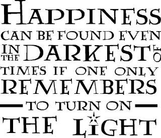 HARRY POTTER DUMBLEDORE HAPPINESS CAN BE FOUND TURN ON THE LIGHT VINYL WALL DECAL HOME DECOR QUOTE   Wall Decor Stickers