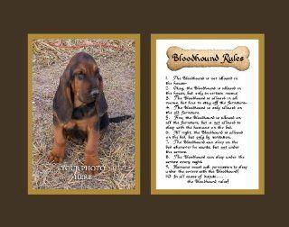 Dog Rules Bloodhound Wall Decor Pet Saying Dog Saying   Decorative Plaques