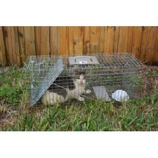 Havahart 1089 Collapsible One Door Live Animal Cage Trap for Raccoon, Stray Cat, Groundhog, Opossum, and Armadillos : Rodent Traps : Patio, Lawn & Garden