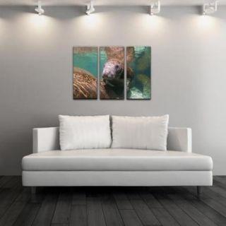 Chris Doherty 'Manatee' Canvas Art 3 piece Set