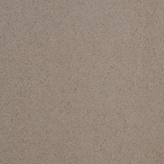 Dixie Group TruSoft Vellore Tango Textured Indoor Carpet