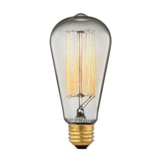Titan Lighting 60 Watt Incandescent A19 Ogden Vintage Filament Light Bulb   Vintage Style Light Bulb TN 2901