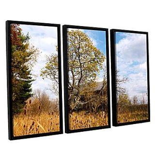ArtWall Cvnp Barn 3 Piece Canvas Set 36 x 54 Floater Framed (0yor038c3654f)