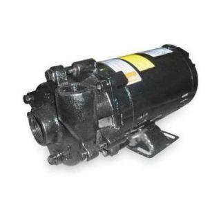 DAYTON 2ZWP4 Centrifugal Pump,3/4 HP,3 Ph,208 230/460