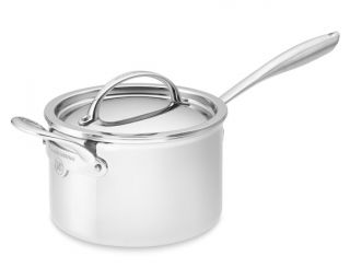Williams Sonoma Signature Thermo Clad™ Stainless Steel Saucepan