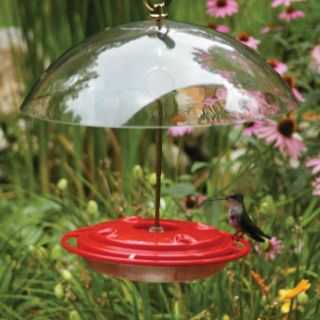 Birds Choice Hummerdome Plastic Hummingbird Feeder