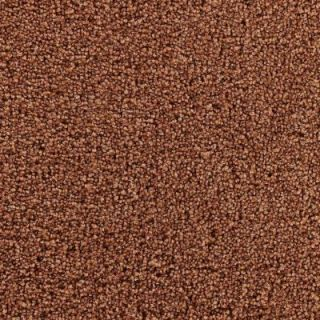 Martha Stewart Living Weston Park Cinnamon Stick   6 in. x 9 in. Take Home Carpet Sample DISCONTINUED 861017   Mobile