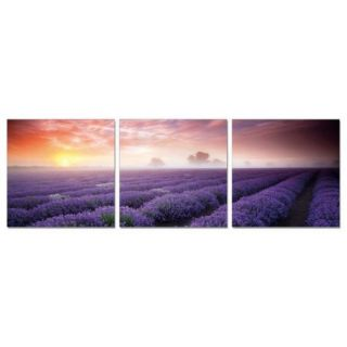 Antique Revival Sea of Purple Flowers 3 Piece Photographic Print Set
