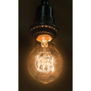 40W Tan Glass 130 Volt Light Bulb by WingTaiTrading