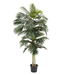 8 ft. Golden Cane Palm Silk Tree   Silk Trees and Palms