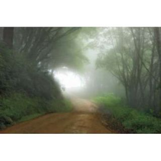 Road to Nowhere Poster Print by Mike Jones (24 x 36)
